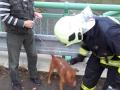 Středočeští hasiči neměli v uplynulém roce nouzi o kuriózní případy (Foto: HZS Středočeského kraje)