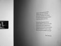Vernisáž výstavy v 1. patře Lidické galerie (Foto: Monika Žitníková)