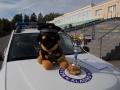 Kladenští sedmáci se již po patnácté zúčastnili soutěže O putovní pohár ředitele městské policie (Foto: KL)