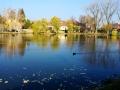 V Buštěhradu vznikl nový rybník (Foto: KL)