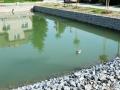 Rybník ve Velké Dobré září novotou