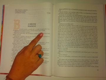 Naučte se číst texty dvakrát rychleji než doposud (Foto: KL)