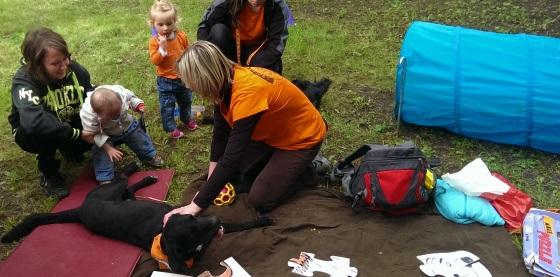 Canisterapie Kladno aneb když psi pomáhají potřebným (Foto: KL)
