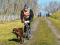 Ve Stochově se konaly závody psích spřežení (Foto: KL)